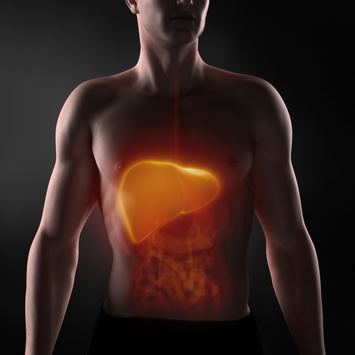 la migliore dieta per ridurre il fegato grasso